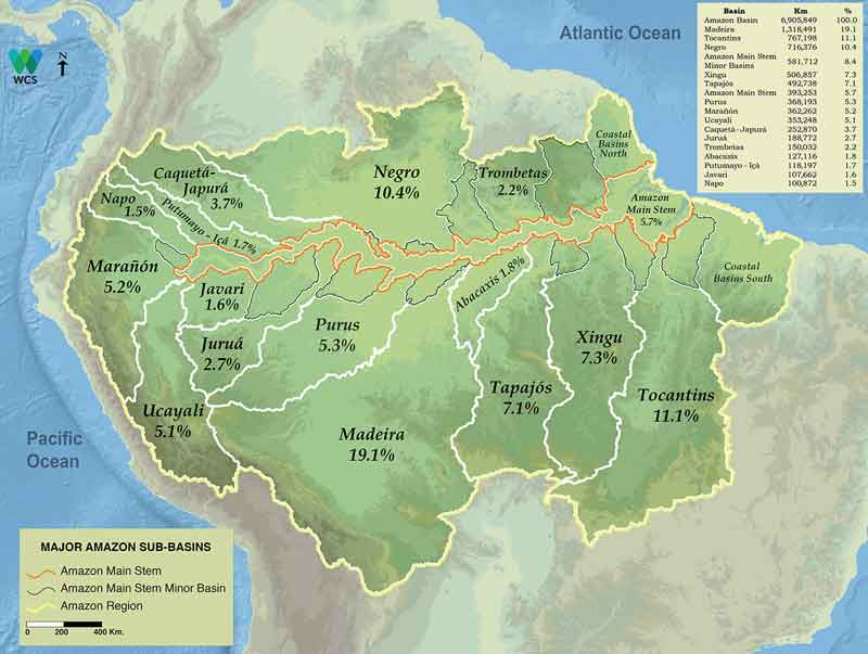 Pictorial Amazon Basin