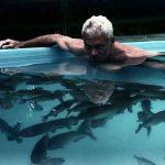 Do Piranhas Eat Humans?