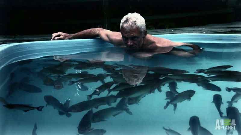 Man in Piranha Pool