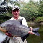 The Size and Anatomy of Piranha
