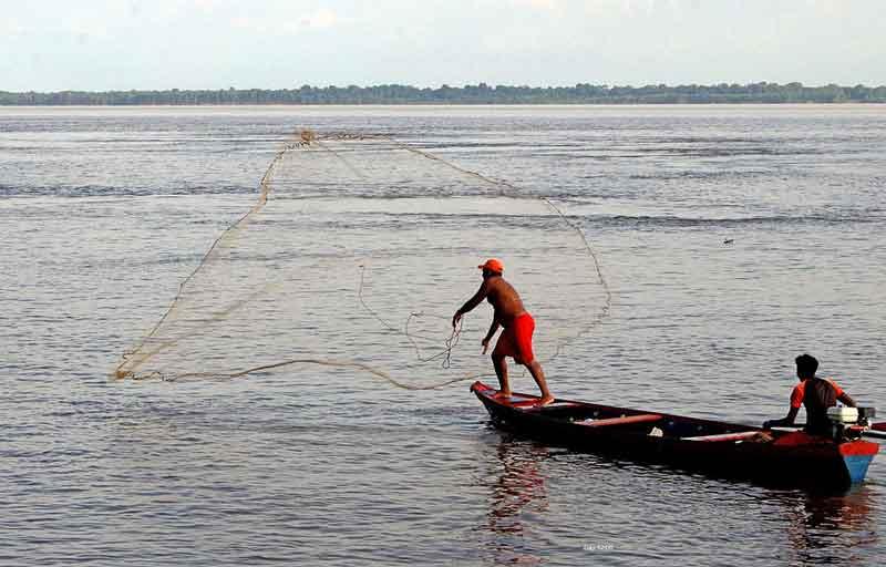 fisherman in the amazon