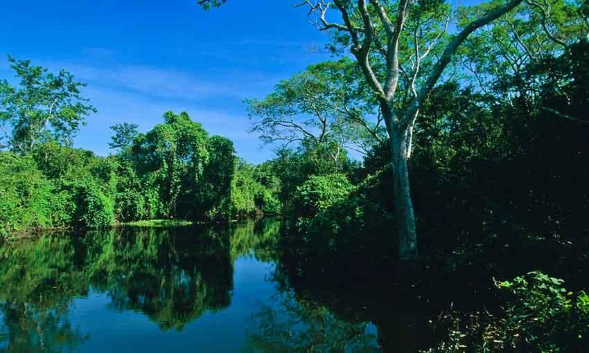 Daveron Beach on the Paraguay river
