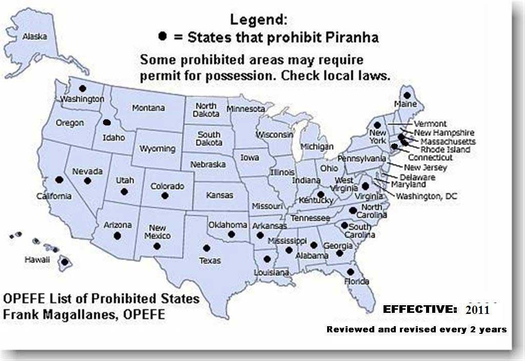 states that prohibit piranha